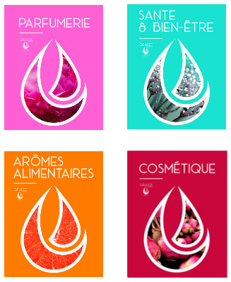 4-filieres-expertise-Grasse Expertise-parfumerie-aromes-sante-cosmetique